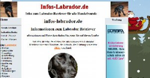 "Screenshot der Website ""Infos-Labrador.de"""